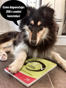 Esme doporučuje knihu